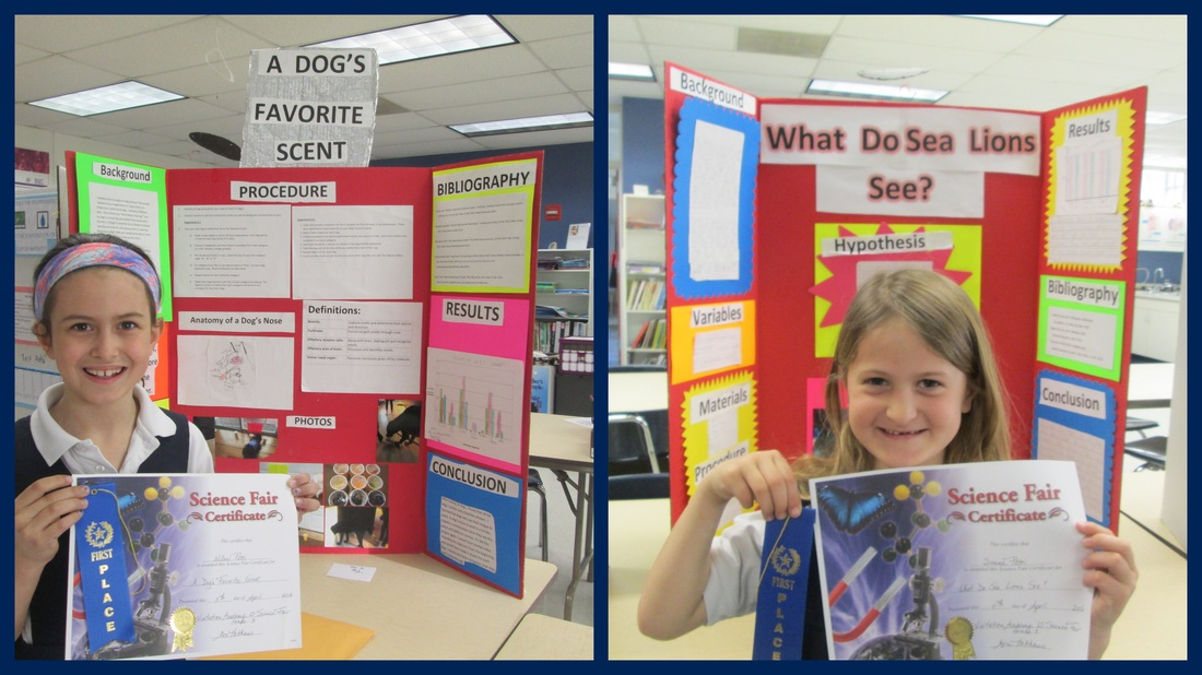 Science Fair - Lower School Science